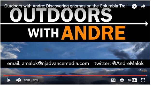 OUTDOORS WITH ANDRE:  DISCOVERING GNOMES ON THE COLUMBIA TRAIL