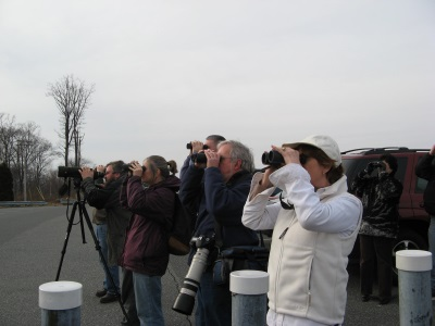 Birding Trip - Photo by Diane Tishler