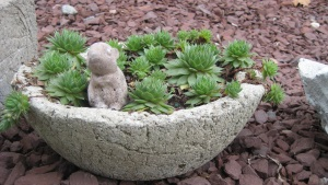 Hypertufa Flower Pot