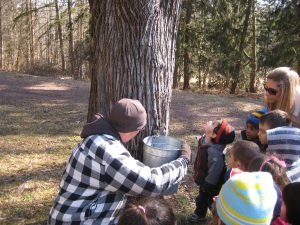 Maple Sugaring Living History
