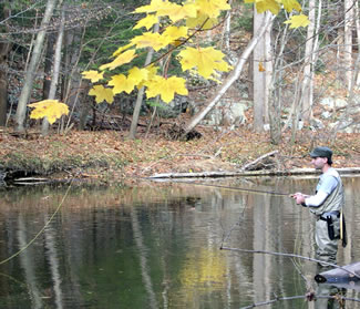 Fall Trout Fishing in New Jersey