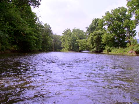 Canoeing down the South Branch
