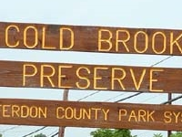 Cold Brook