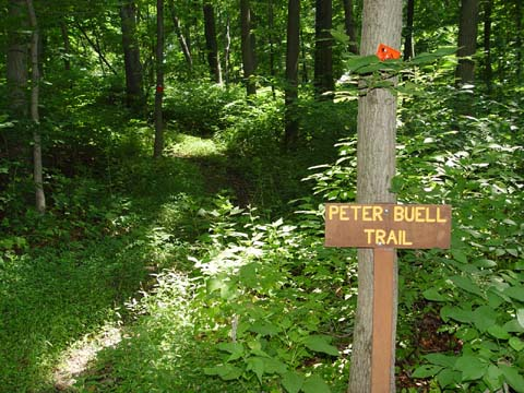 Round Mountain Section of Deer Path Park